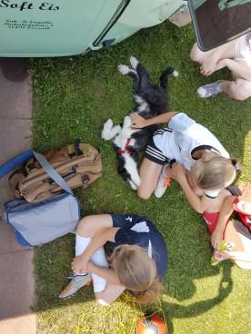 Sommer in der Schule - Kuscheln mit PKG-Schülern